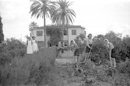 ביתו של אדם כמותו – הבית הישראלי בספרות