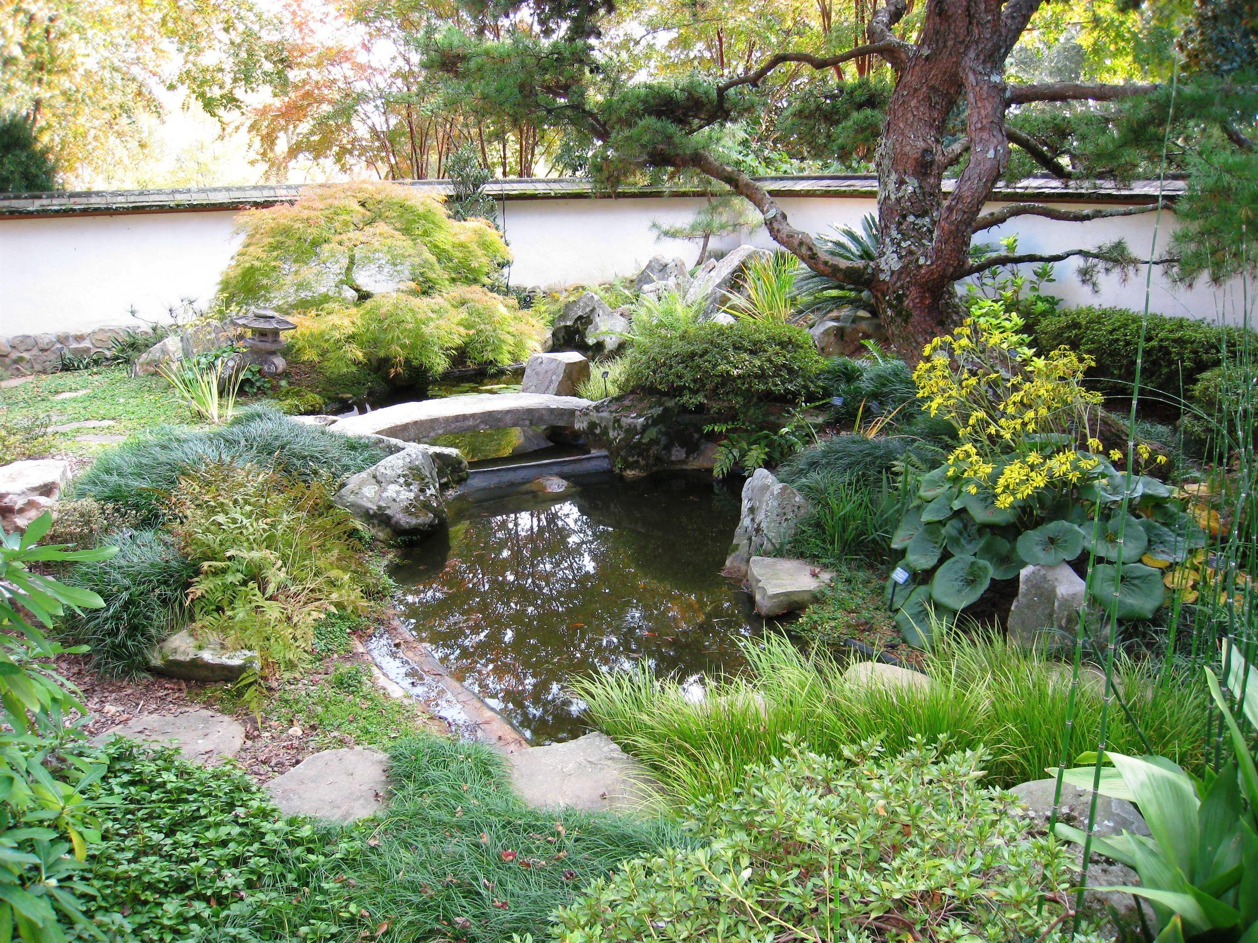 Japanese_garden_-_Atlanta_Botanical_Garden