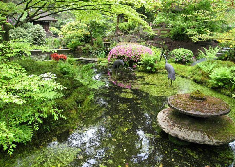 japanese-garden19