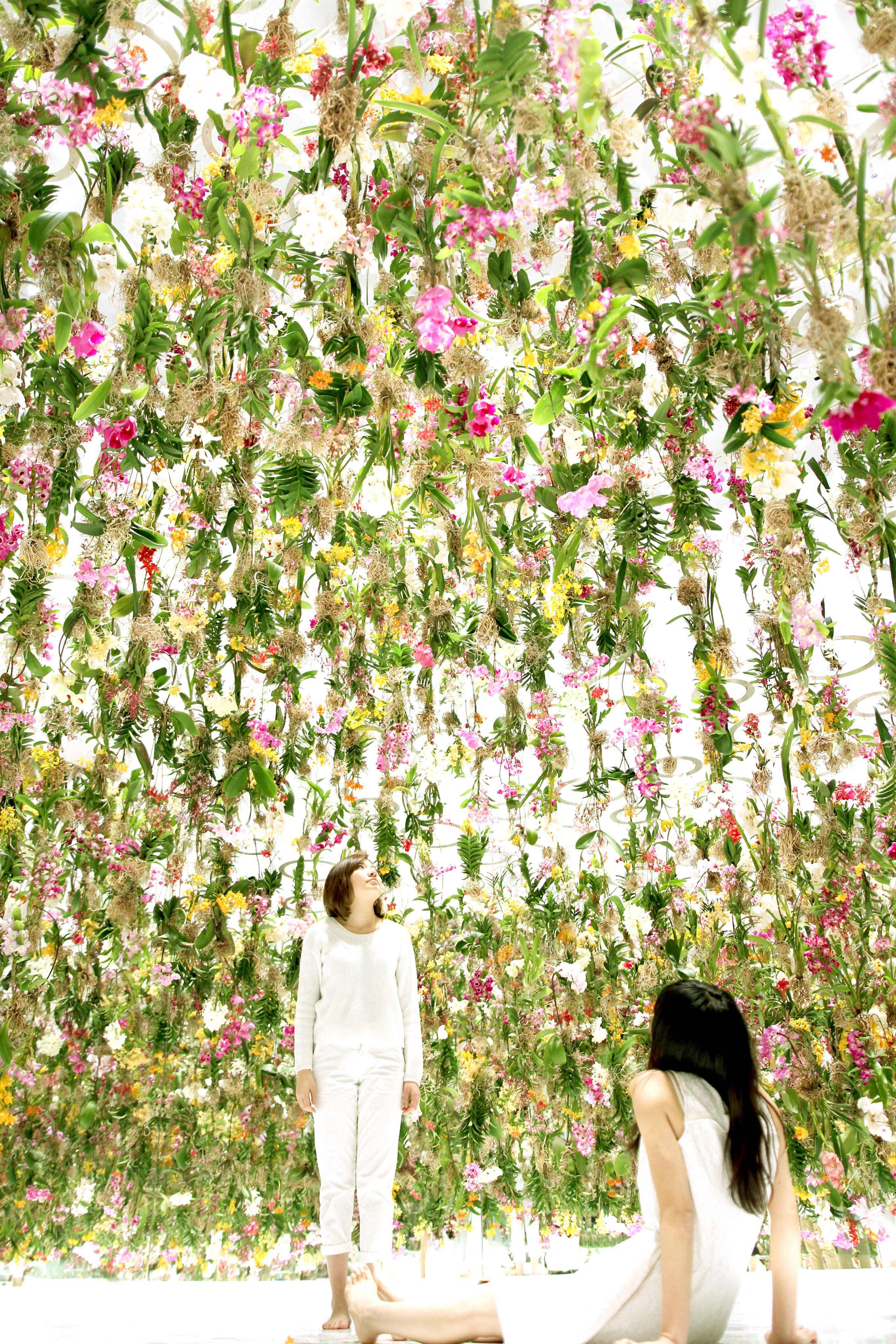 גן פרחים מרחף ואינטראקטיבי ביפן