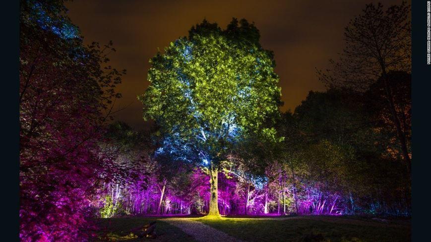 בעיר ALINGSAS שבשוודיה, חוגגים את האור מדי שנה