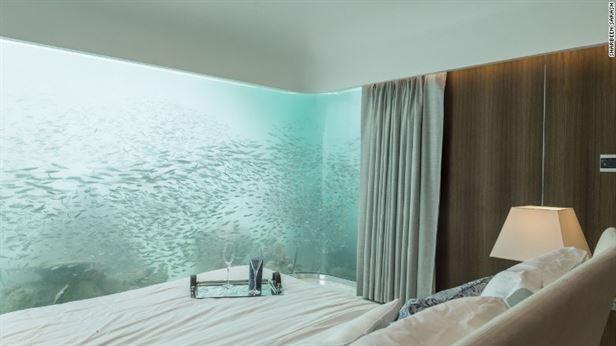 9.5 סנטימטרים עובי של זכוכית, בחלונות מהרצפה עד התקרה, מתחת למים. זה נראה כאילו אין דבר בינך לבין הדג