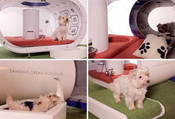 samsung-dream-doghouse-02