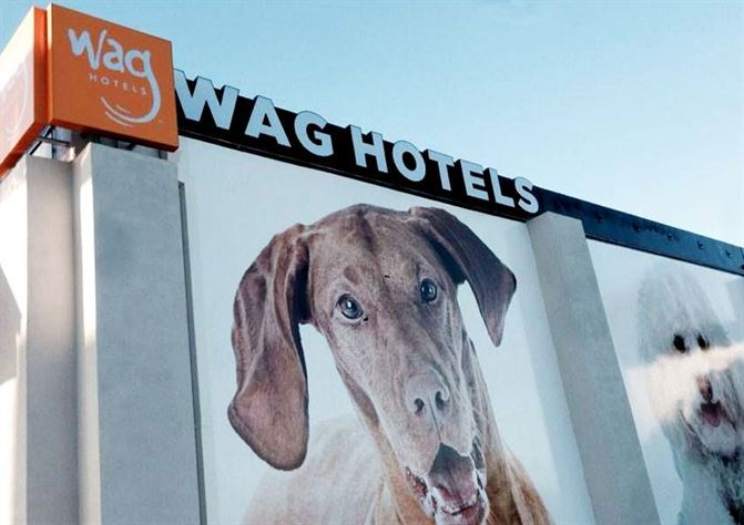 wag-hotels-gall01