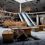 המציאות החדשה של מרכזי הקניות