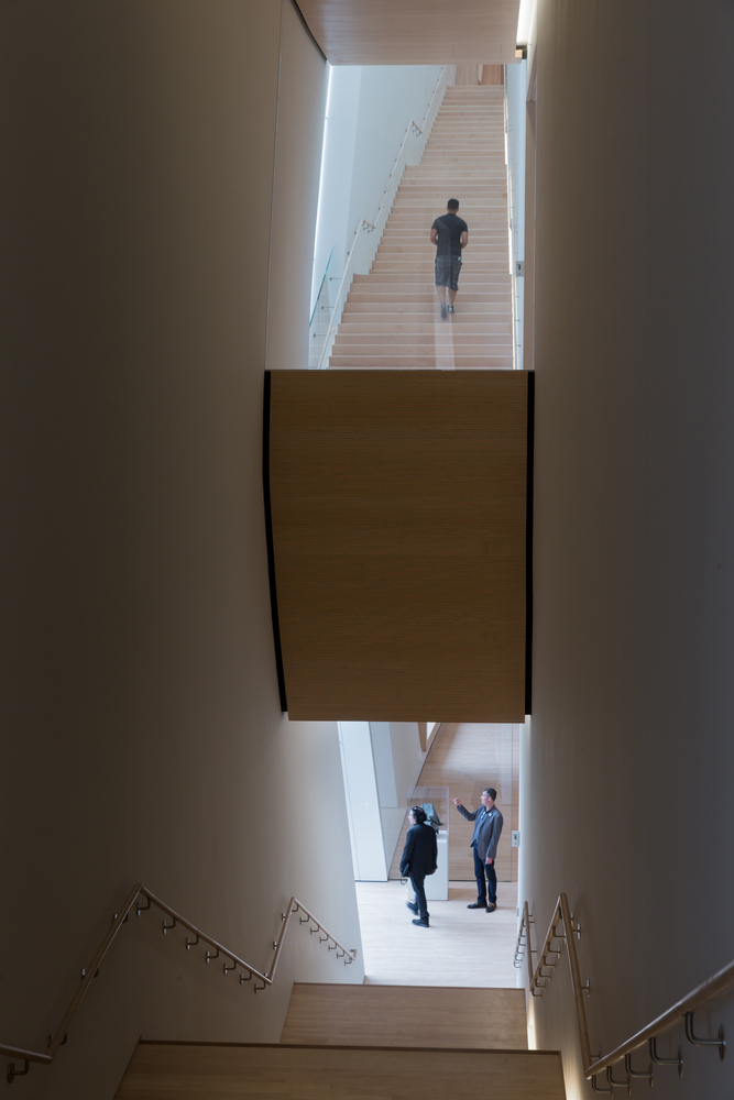 22._City_Gallery_stairs__photo_©_Iwan_Baan__courtesy_SFMOMA