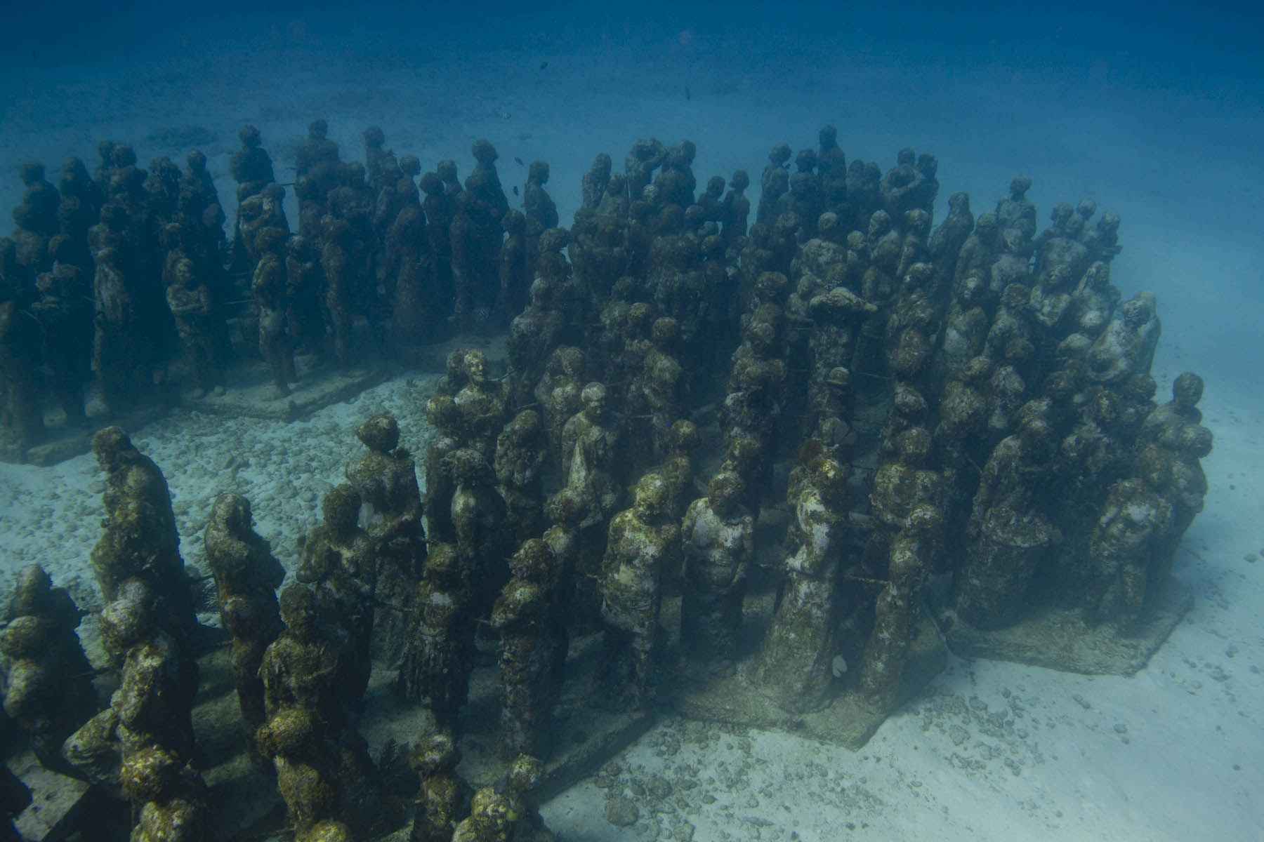 Silent-Evolution-sculptures-musa-Jason-DeCaires-Taylor