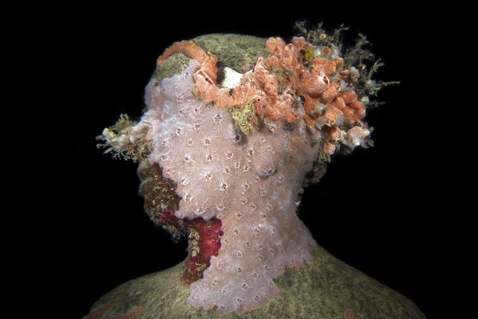 Vicissitudes_Grenada_coral_night_IMG_0570_Jason-deCaires-Taylor_Sculpture