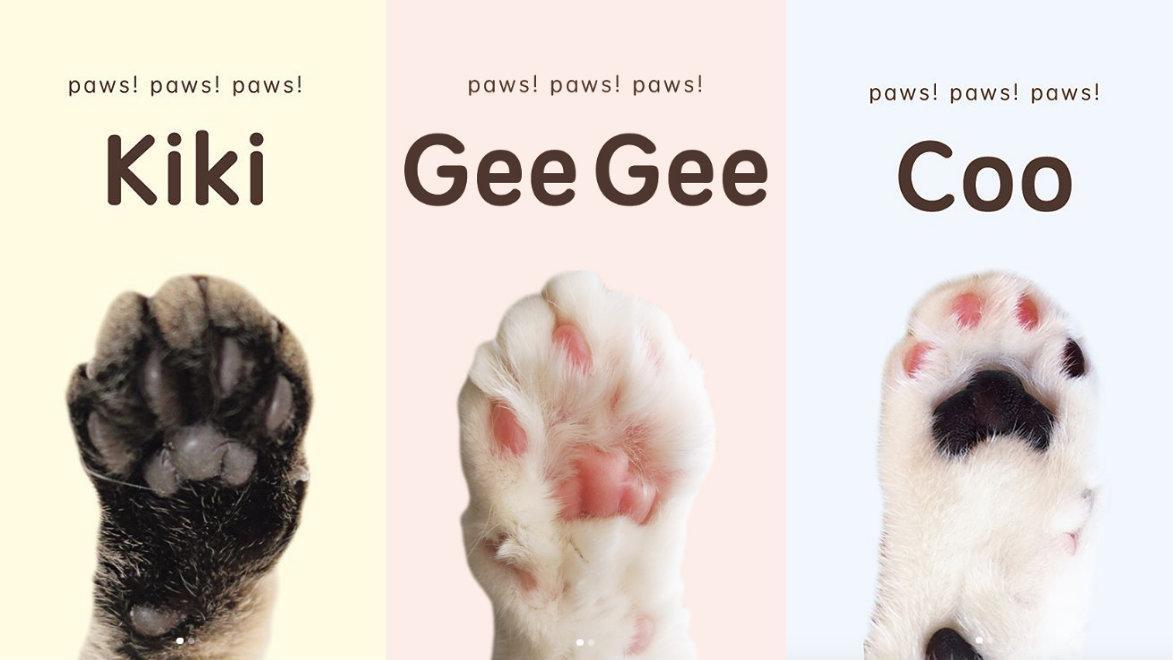 collage-cat-paws-quartz