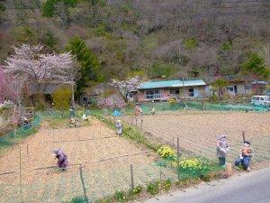 עמק הבובות הביזרי ביפן