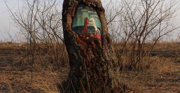 עצים לפעמים גם מחבקים