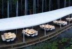 מסעדה המתפתלת ביער ומתמזגת בו