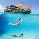 מה יכול להיות יותר מרגיע מקוקטייל בבר השט בלב האוקיינוס?