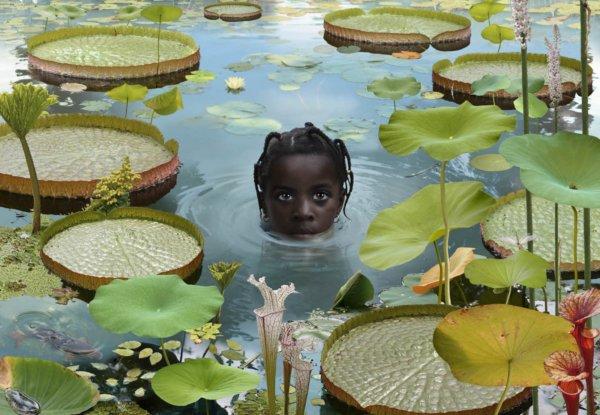שחור אלגנטי בג'ונגל