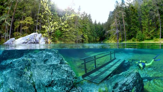 לצלול בפארק תת ימי