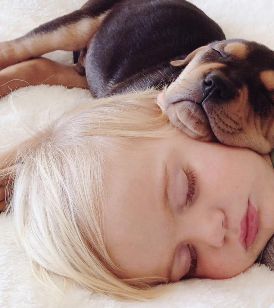 הכלב Theo והתינוק Beau נמים