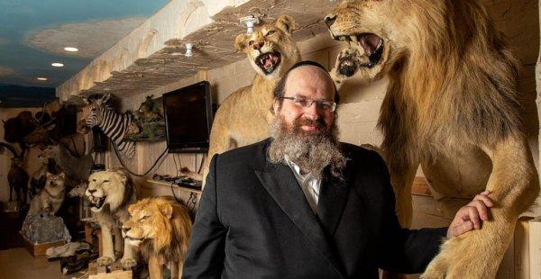 המוזיאון של החיות מהתורה, בברוקלין, בסכנת סגירה