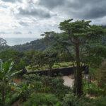 מתחם נופש אמנותי בקוסטה ריקה: Atelier Villa | Art Villas