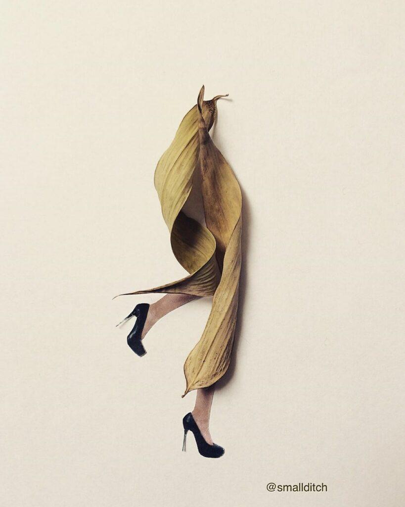 אמנית הקולז'ים Martha Haversham