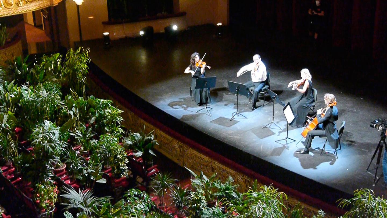 בית האופרה של ברצלונה ניגן קונצרט ל-2,000 צמחים