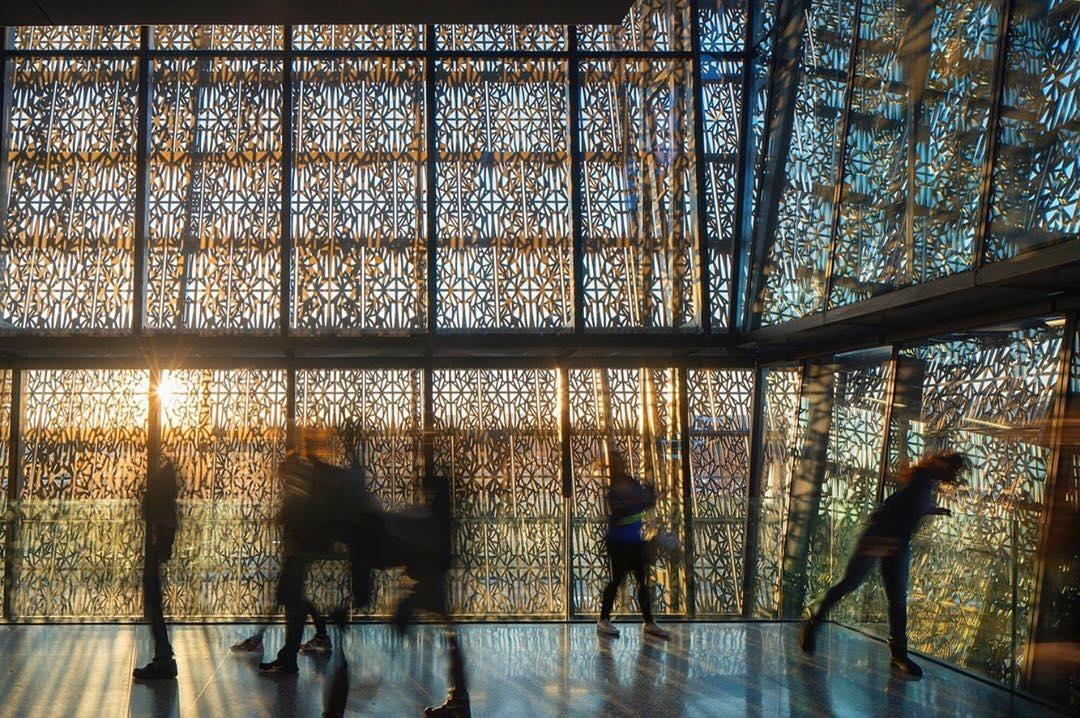 אייקונים המפתחים פרדיגמות חדשניות באדריכלות