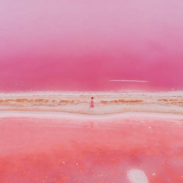 פלטת הצבעים של הטבע