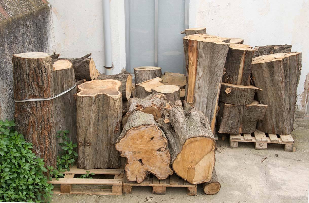 פסלי העץ השובבים של Efraïm Rodríguez