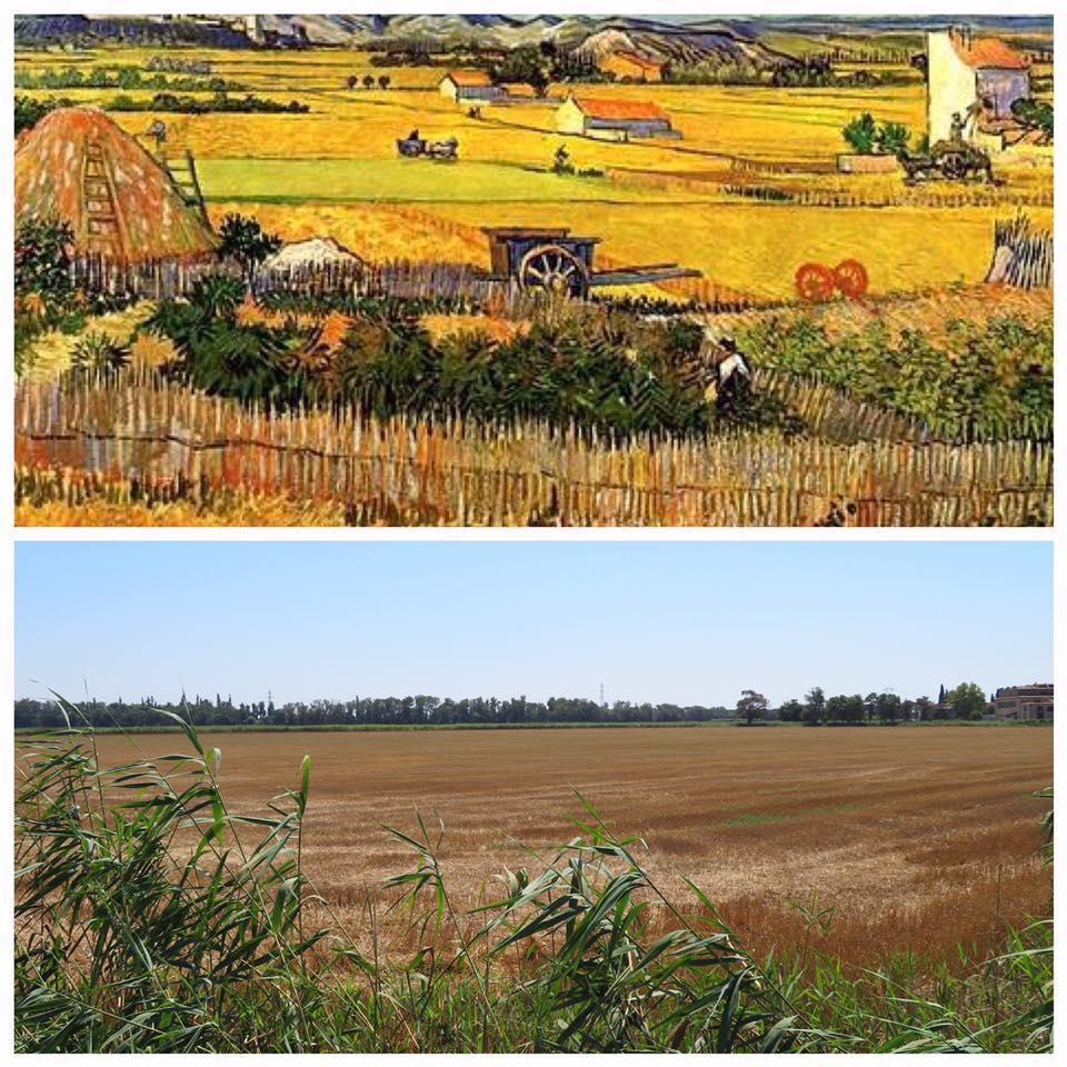 המקומות ששימשו השראה לציוריו המפורסמים של וינסנט ואן גוך