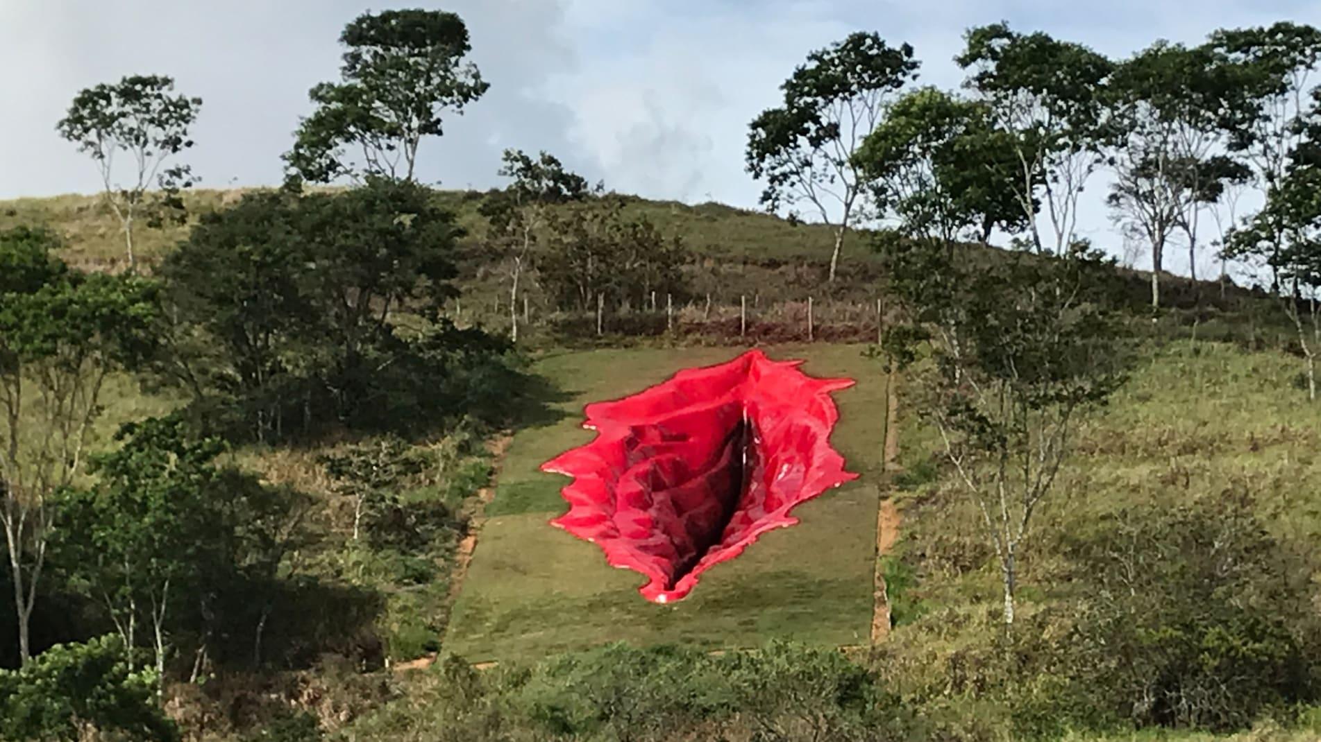 פסל חוצות שנראה כמו פות נשי, מעורר סערה בברזיל