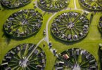 הגנים הקהילתיים האובליים הייחודיים של קופנהגן
