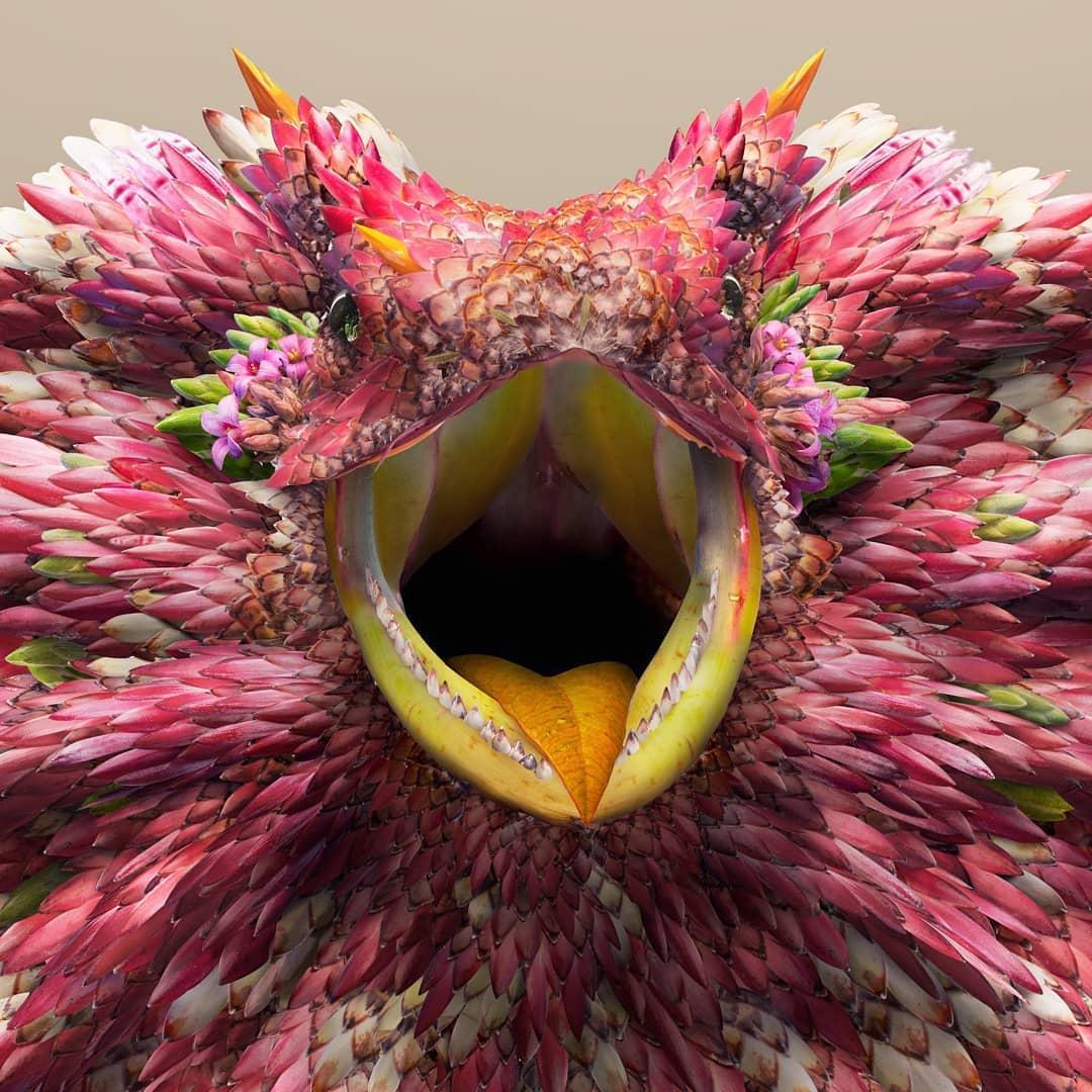 בעלי חיים מעלים ופרחים: Josh Dykgraaf