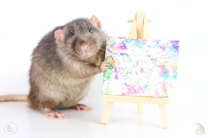 ציורי עכברושים הפכו ללהיט מסחרי, עם ביקוש רב