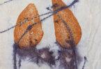 בגדים עם הדפס בוטני, של לאה בן אריה