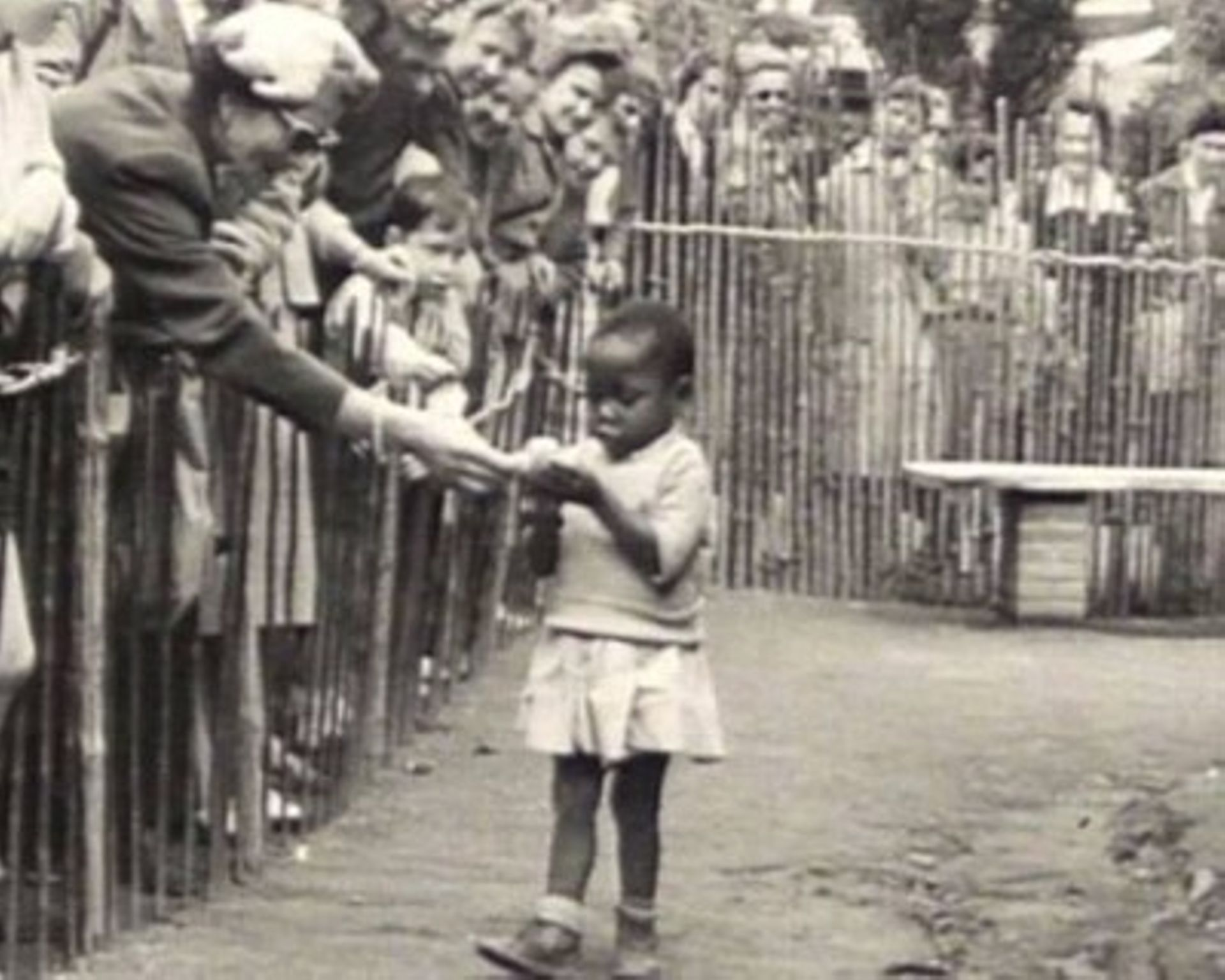הסוד האפל של צרפת: גן חיות שהציג בני אדם מכפרי הקולוניה