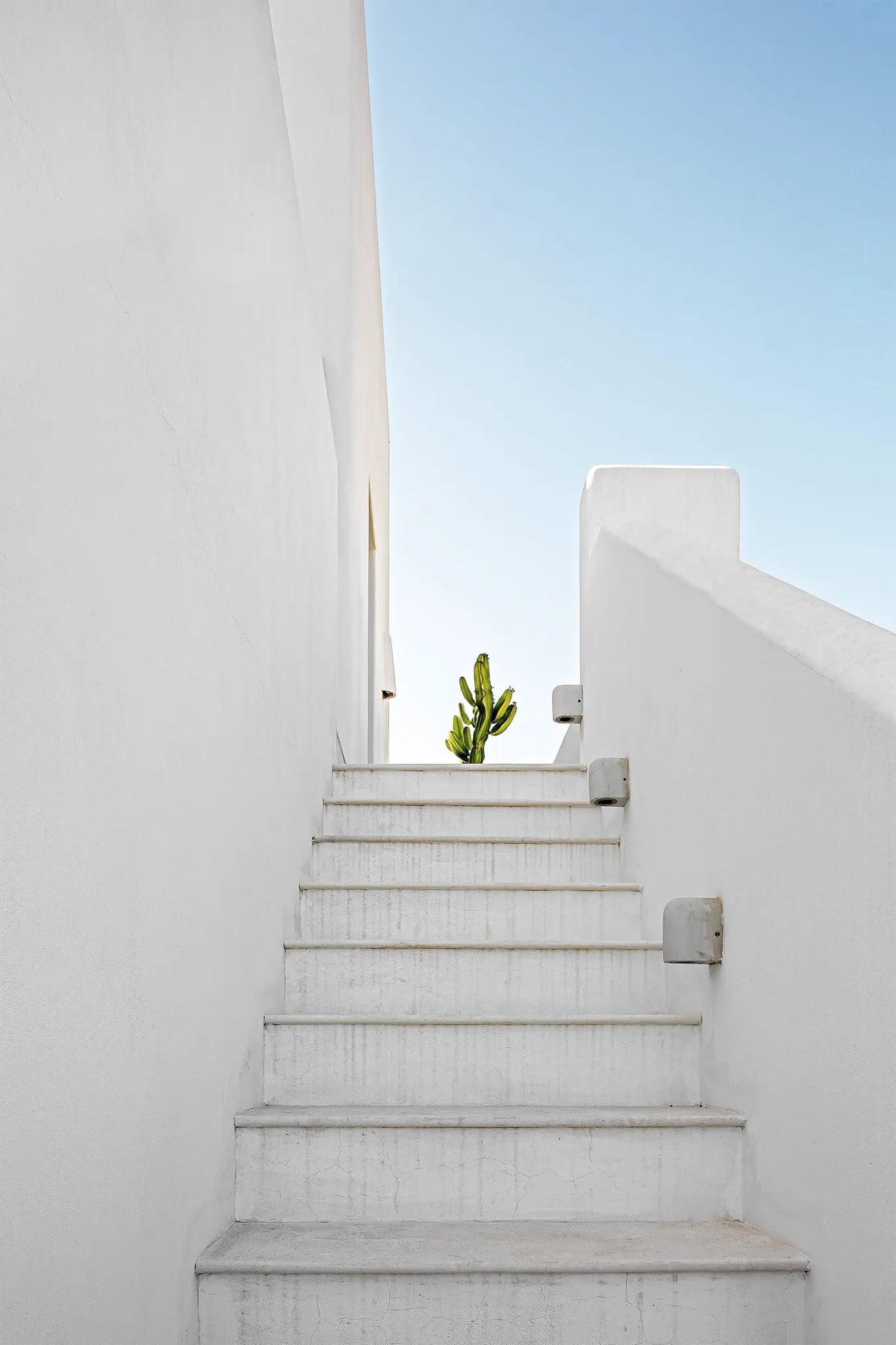 עיצוב ים תיכוני מודרני של בית נופש בספרד