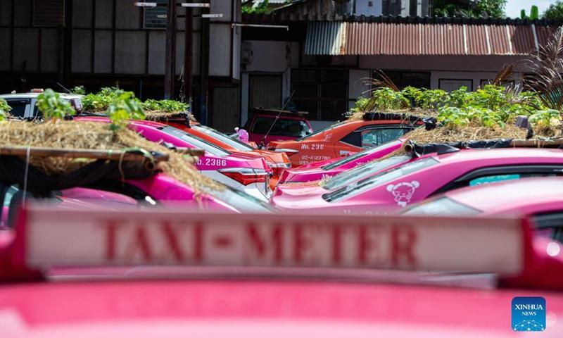 הקורונה השביתה את המוניות בתאילנד וגגותיהן הפכו לגינות לגידול ירקות